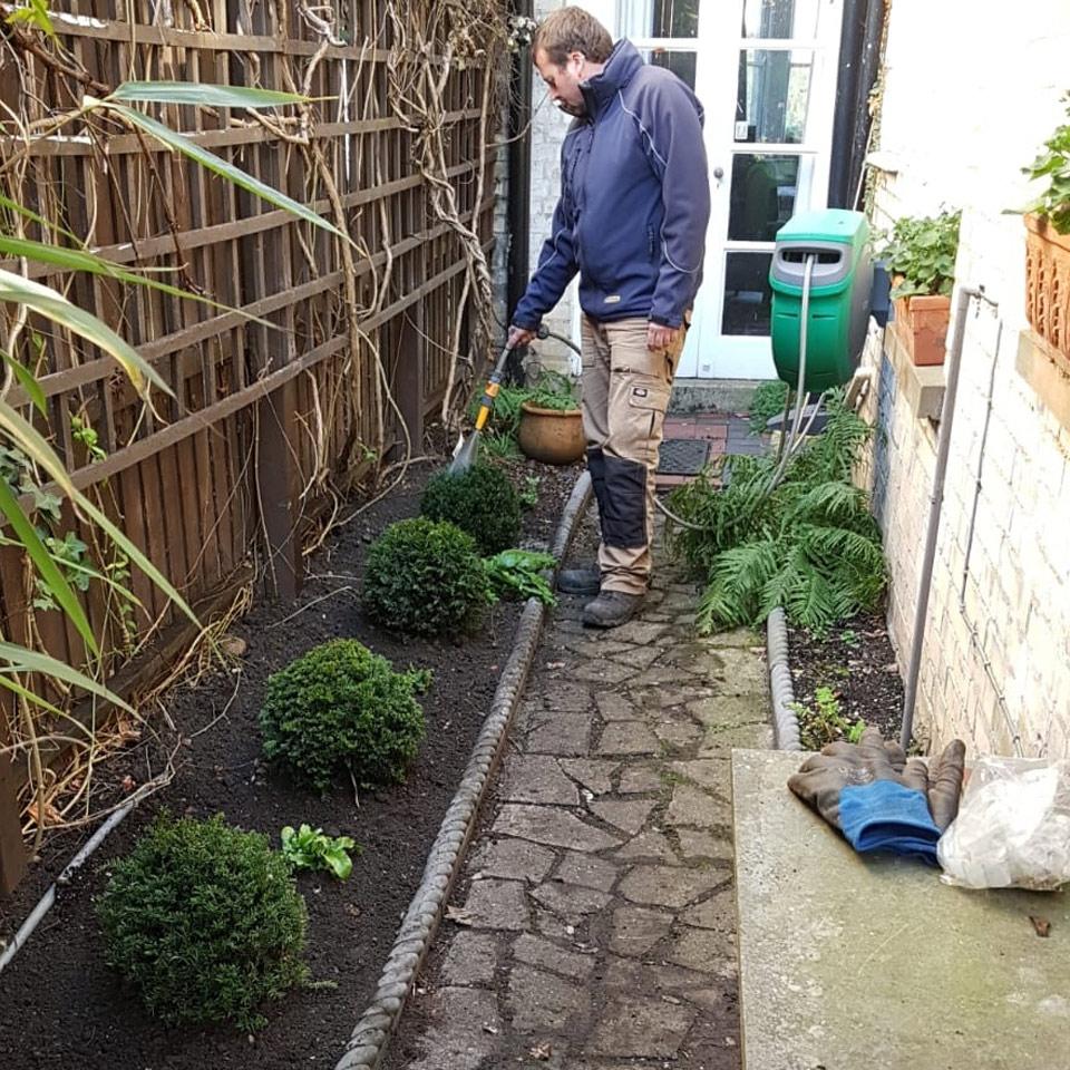 maintenance-watering